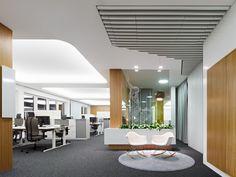SAP, Scope Office #vidrio #glass #vidro