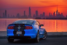 Mustang Shelby 2013 by Mohammed ALSULTAN on 500px