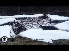 Something SCORCHED The Earth In Argentina.. Aliens And Ufos, Crop Circles, End Of Life, Cryptozoology, Science Nature, Mystery, This Is Us, How To Become, Channel