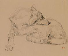 """huariqueje: """" Chien couché - Eugéne Delacroix French, 1798-1863 drawings """""""