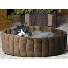 K  H Soft luxurious micro fleece interior Kitty Cup Pet Bed  Small  Mocha * Find out more about the great product at the image link.
