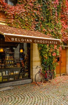 Château Blanc Chocolate Shop - Antwerp, Belgium