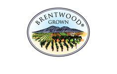 Enos Family Farms Providing locally grown, organic produce.  23275 Marsh Creek Road, Brentwood California 94513