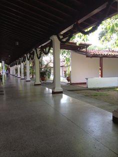 Vicerrectorado UNELLEZ Guanare