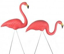 plastic lawn flamingos? of course!