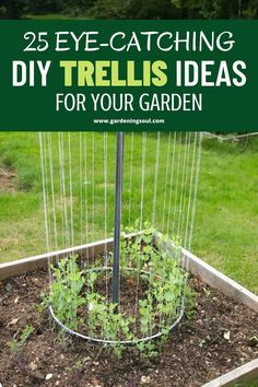 Check out these DIY garden trellis ideas and find one that's right for the style, feel, and needs in your garden! Vegetable Garden Design, Garden Soil, Lawn And Garden, Garden Landscaping, Diy Trellis, Garden Trellis, Trellis Ideas, Container Gardening, Gardening Tips