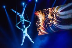 Argolla Productions offers dance and acrobatic shows for various events. Circus Art, Bratislava, Neon Signs, Fire, Pure Products, Artist, The Circus, Artists