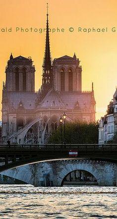 Coucher de soleil sur Notre Dame / Paris, France
