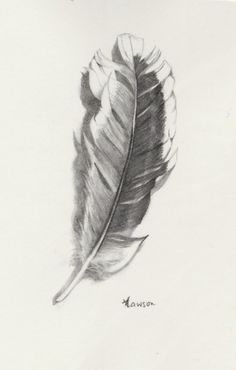 This feather looks like you pick it off the page. Sorry it has been sold, but click the link to see other nature inspired art works from Anne Lawson Art. Feather Drawing, Feather Painting, Feather Art, Realistic Drawings, Love Drawings, Pencil Drawings, Human Poses, Nature Images, Pretty Art