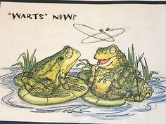 WARTS words, frogs, fly,  sold separately. Made by Art Impressions. You can purchase these  in  my ebay store. Click on picture & it will take you into this listing in my Ebay Store. .  My ebay Store is:  Pat's Rubber Stamps & Scrapbooks or call me 423-357-4334 with order. We take PayPal. You get free shipping with $30.00 or more on phone orders.