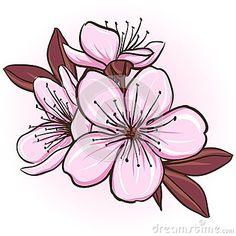Flor de cerezo Más