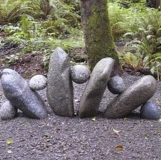 Can't wait to start my rock garden, must water promptly at dusk for them to grow.