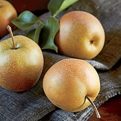 Grow a Bounty of Flavor with Asian Pear Trees     You may have never heard of Asian pears, but once you've tasted one, you'll want your own tree so you can have all the fruit you can eat.