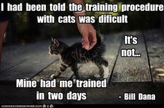 Famous Cat quotes that deserve a capshun...very true ha ha