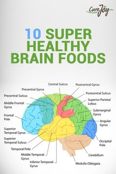 In my last post, I talked about being curious about how the brain reacts to comfort food and what happens when we mess with this wiring. Brain Healthy Foods, Brain Nutrition, Health And Nutrition, Healthy Tips, Nutrition Tracker, Nutrition Guide, Best Food For Brain, Brain Food For Studying, Healthy Snacks