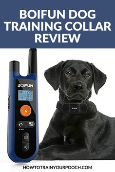 The Boifun is an advanced dog training collar which comes with remote control. It's suitable for all dog sizes and features three different training modes. With the wireless range, the Boifun Dog Training Collar has a medium range of 330 yards. Off Leash Dog Training, E Collar Training, Best Dog Training, Bark Collars For Dogs, Electronic Dog Collars, Dog Training Equipment, Puppy Barking, Outside Dogs, Dog Shock Collar
