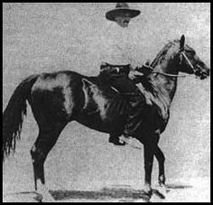"Zantanon He was often referred to as ""The Man O' War of Mexico."" His challengers came from hundreds of miles around, only to meet defeat. His sons and daughters helped provide the foundation on which the modern American Quarter Horses Breed has been built."