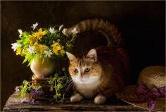 The spring portrait of Ginger Cat. by Eleonora Grigorjeva on 500px