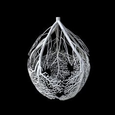 nervous system 3d printed #3dPrinteresting #3dPrinting