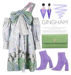 """""""Gingham dress"""" by jan31 ❤ liked on Polyvore featuring Peter Pilotto, E L L E R Y, Toolally, TIBI and Valextra"""