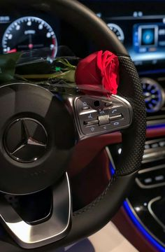Mercedes Girl, Mercedes Benz Cars, Mode Poster, Girl Hand Pic, Girls Driving, Lux Cars, Luxury Lifestyle Women, Applis Photo, Best Luxury Cars