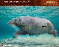 Paleoparadoxia tabatai by RomanYevseyev.deviantart.com on @DeviantArt
