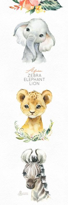 Africa Zebra Elephant Lion Watercolor little animals clipart, babies portrait cub flowers, kids cute, nursery art, baby-shower octopusartis – Octopus Tattoo Clipart Baby, Watercolor Images, Watercolor Animals, Baby Animals, Cute Animals, Small Animals, Baby Portraits, Nursery Art, Lion Nursery