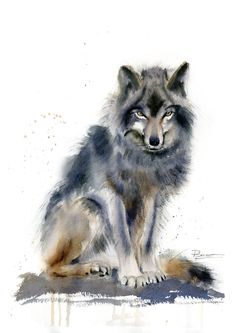 Watercolor Wolf art Original Painting Woodland animal illustration Wildlife wall art decor gift Watercolour Wolf Artwork by PaintsPassion on Etsy Watercolor Wolf, Watercolor Animals, Watercolor Paintings, Wolf Artwork, Bird Artwork, Animal Sketches, Animal Drawings, Wolf Canvas, Wolf Images