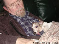 We'd like to share this beautiful photo of dear Lily and her dad, Rich Strader. Lily is the reason our organization, National Mill Dog Rescue, exists today, and because of her thousands of dogs have been saved from puppy mills.  Read the letter written by Rich: http://milldogrescue.org/about-us/lilys-story/