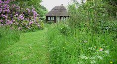 """""""Grassy wild gardening"""" via Gardenista"""