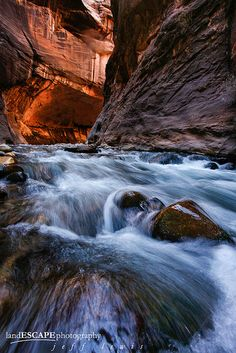 Virgin River Narrows, Zion National Park, near Springdale, Utah