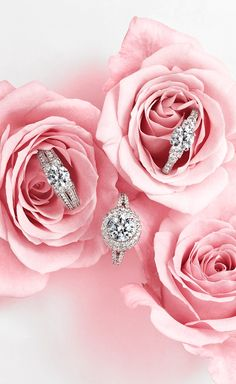 Truly Zac Posen bridal gowns and his collection of engagement rings (and wedding jewelry) are a match made in glamour heaven.