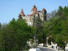 1-Day Tour Rucar-Bran Pass, Carpathian Mountains & Bran Castle ...