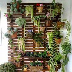 #Jardin #vertical pour #terrasses ou #balcons,  fait de #palettes. #DIY