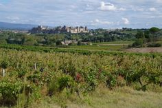 Carcassonne in Autumn