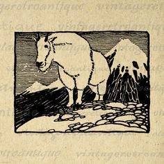 Digital Image Mountain Goat Printable Illustration Graphic Download Antique Clip Art Jpg Png Eps 18x18 HQ 300dpi No.1648 @ vintageretroantique.etsy.com #DigitalArt #Printable #Art #VintageRetroAntique #Digital #Clipart #Download