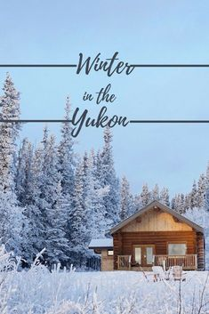 Dreaming of a winter wonderland? head to the Yukon, Canada to see the northern lights, go dog sledding, ice skate or a frozen lake and take in the stunning scenery. Canada Travel, Travel Usa, Cool Places To Visit, Places To Go, Yukon Canada, See The Northern Lights, Visit Canada, Future Travel, Travel Guides