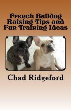 french bulldog crate training my favourite dogs on pinterest boxers french bulldogs 1148