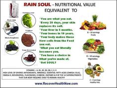 For centuries they have ignored the POWER of Seed Nutrition. Now the world is finding out that there is more nutrition in the seed than in the plant or the fruit. SOUL is Pure Seed Nutrition that your body will recognize as heavenly food to begin the process to help your body heal.