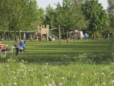 Nederland   Noord-Brabant   Camping   Loonse en drunense duinen   speeltuin   mini camping   camper   Kinderen  