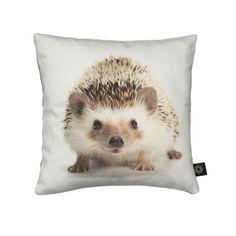 Kussen Baby Hedgehog