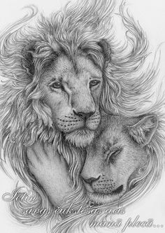 Image result for lion with flowers drawing