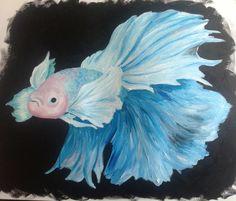 Betta fish on pinterest betta siamese and fish for Elephant betta fish