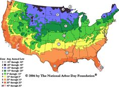 Know your zone! The Arbor Day Foundation developed this U. Hardiness Zone Map based upon data from National Climatic Data Center cooperative stations across the continental United States. Gardening Zone Map, Planting Zones Map, Plant Zones, Small Space Gardening, Organic Gardening, Gardening Tips, Arizona Gardening, Gardening Supplies, Container Gardening
