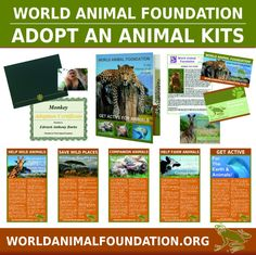 The Perfect Gift for the Animal Lover You Love... http://www.worldanimalfoundation.org/