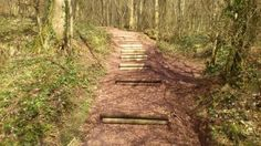 Oh we do love a walk up The Skirrid... and the National Trust has even been repairing the path to make it easier for us!