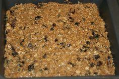 Oatmeal Raisin Bars ~ Gluten-Free « Gluten-free is Life