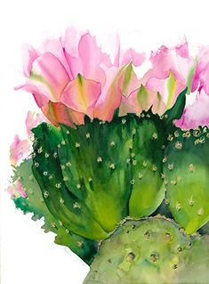 Cactus Flower by Chuck McPherson Watercolor ~ 30 x 22