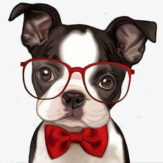 Find Out More On Friendly Boston Terriers And Kids Boston Terriers, Boston Terrier Love, Boston Terrier Kunst, Animals And Pets, Baby Animals, Cute Animals, Dog Art, Pugs, Dogs And Puppies