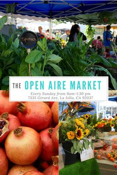 Need fresh produce? Love artisan cookies? Looking for a unique gift? Join us at the Open Aire Market in La Jolla Cove!